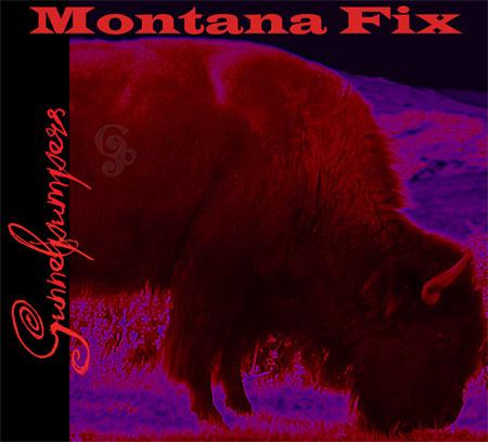Gunnelpumpers - Montana Fix Album Review