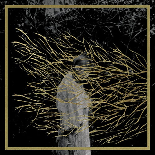 Forest Swords - Engravings Album Review (Tri Angle Records