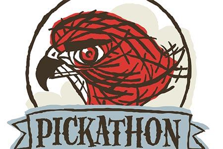 Pickathon Festival