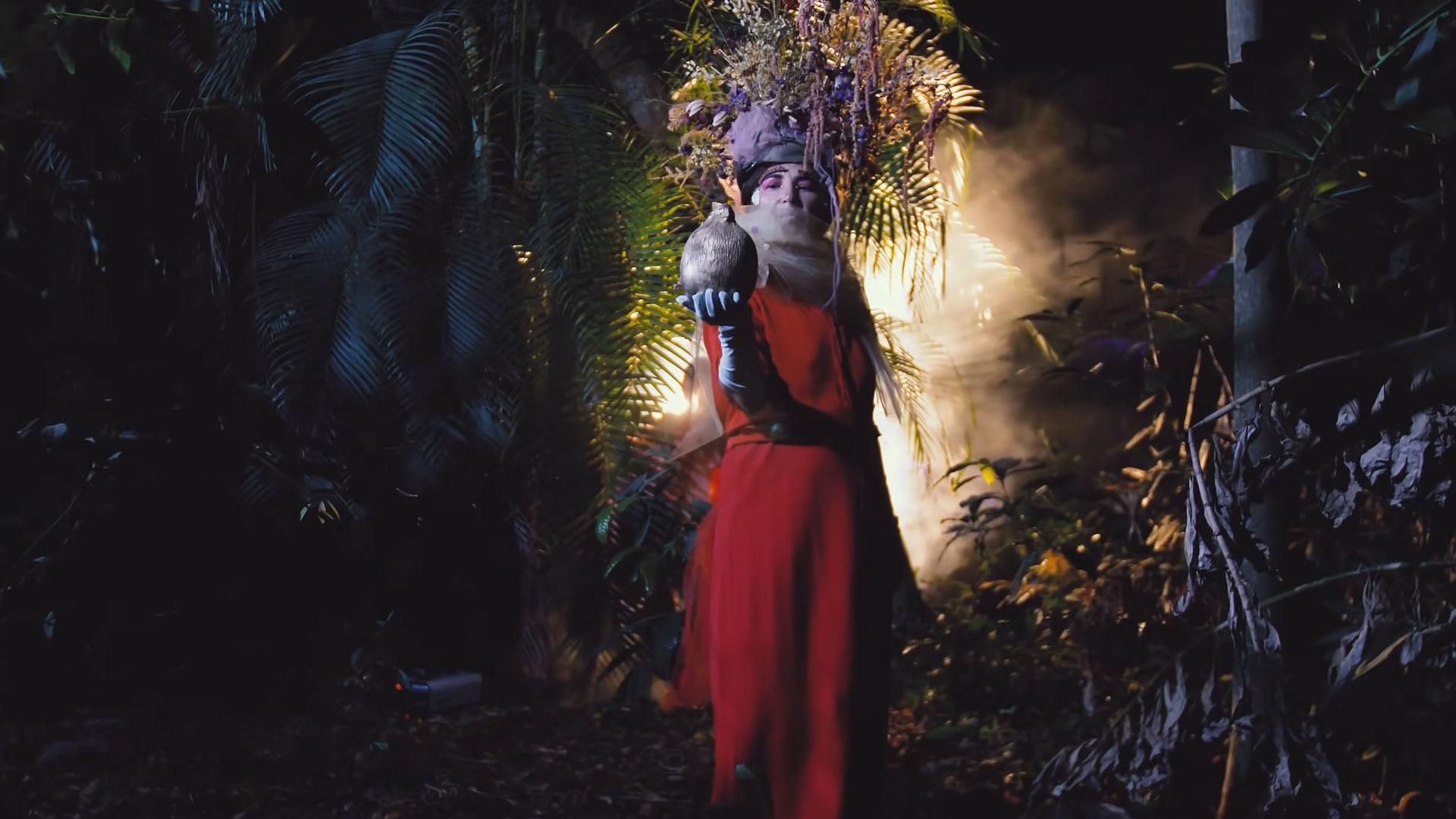 Night Heron - Dreamz Music Video